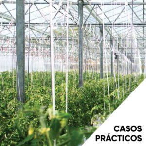 Casos-prácticas-3